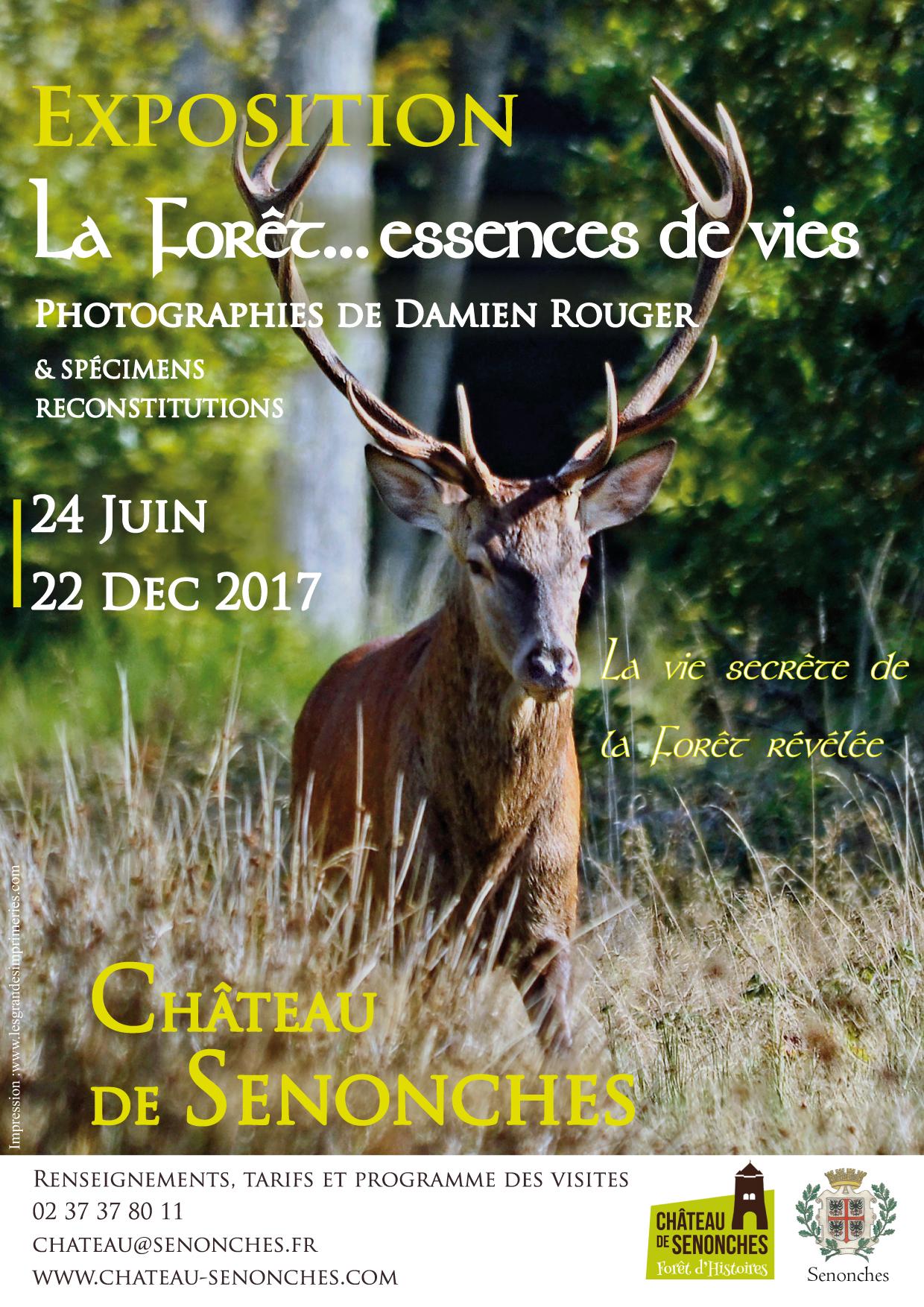 """Exposition """"La Forêt… essences de vies"""" prolongée jusqu'au 22 décembre 2017"""