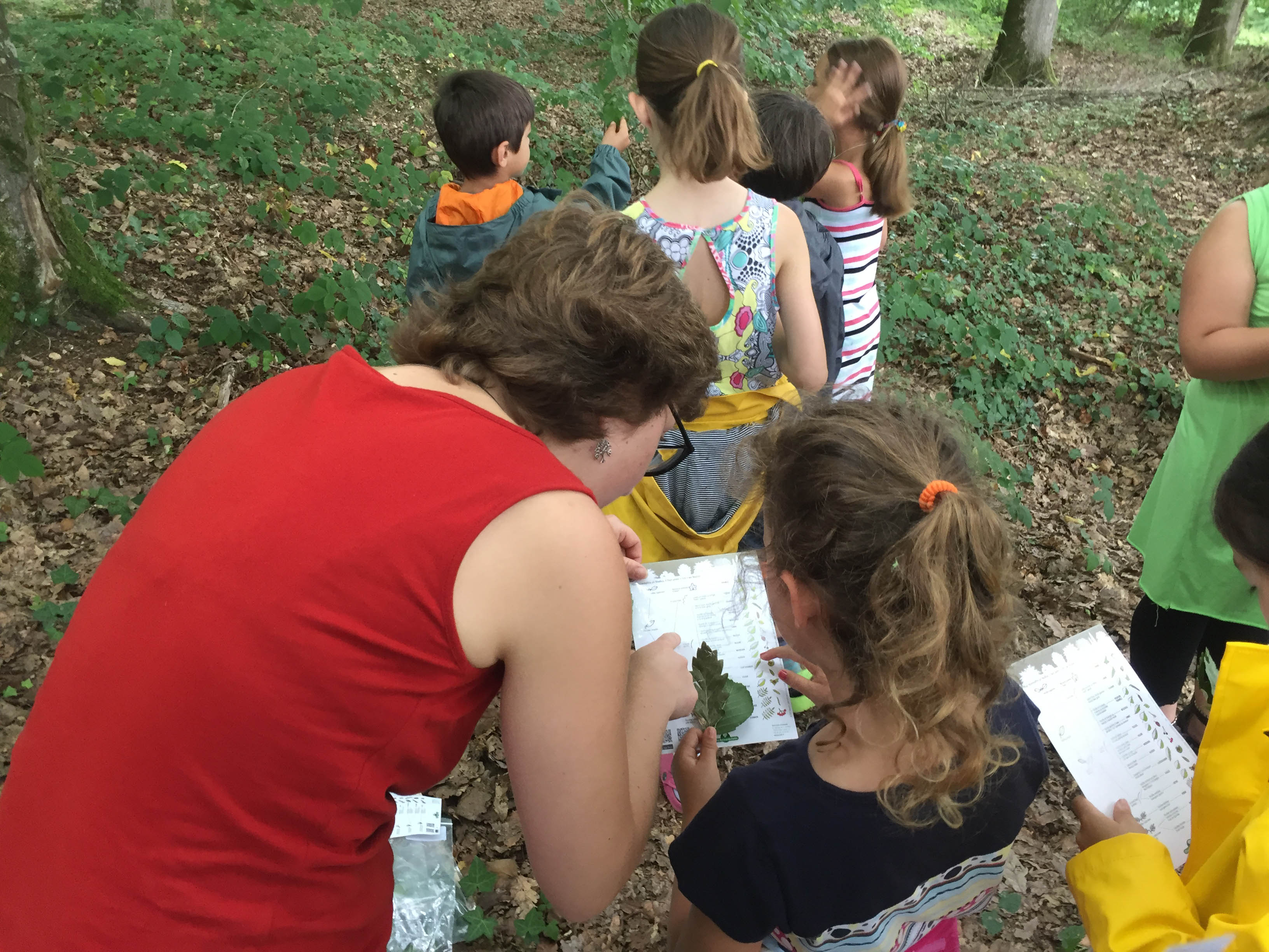 Le guide des activités pédagogiques du Château est sorti !