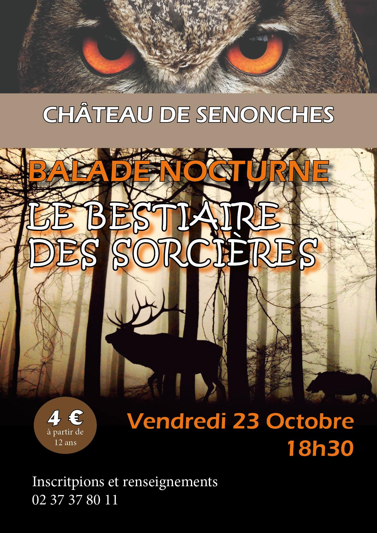 Balade nocturne «Le Bestiaire des sorcières»